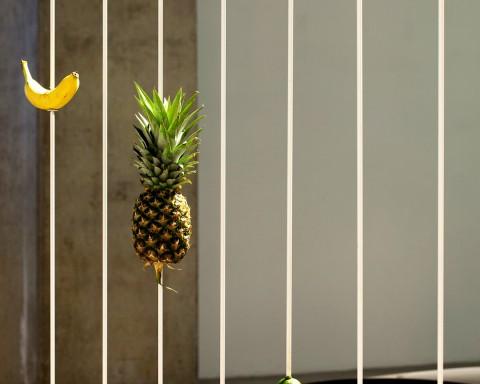 diango_hernandez_fruits